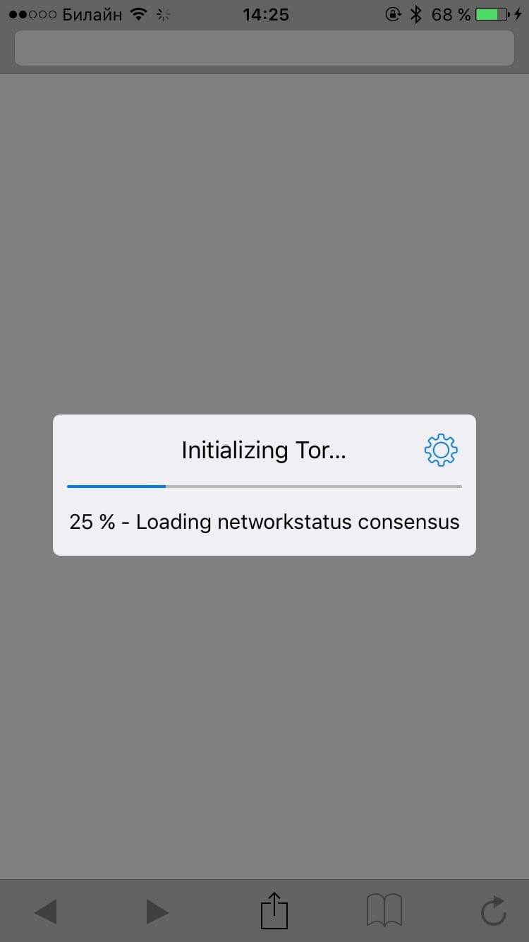 tor browser как им пользоваться gydra